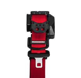All Ages Seat Belt - Red 3 - Phoenix Seating